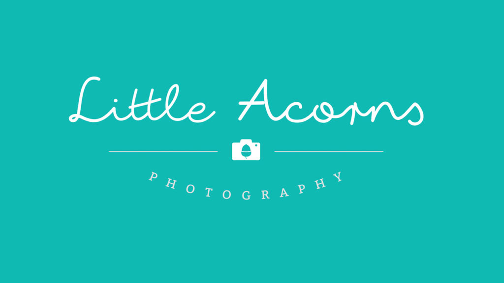 Little Acorns Photography Logo Design